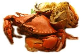 Crab - picture no. 1