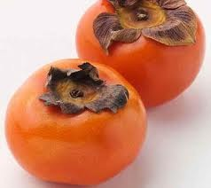 Japanese persimmon - picture no. 1
