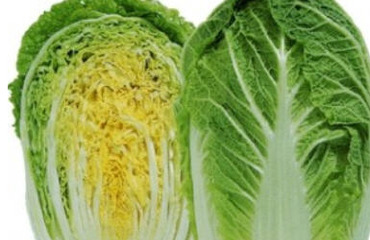 Peking cabbage