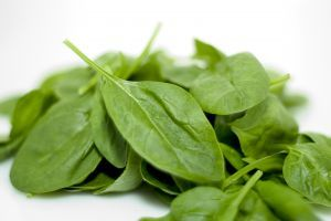 Spinach - picture no. 1