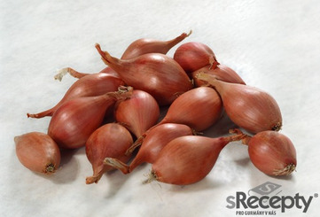 Shallot - picture no. 1