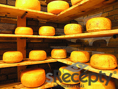 Hard cheese - picture no. 1